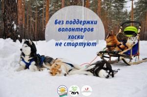 Volunteer_sled_dog_race